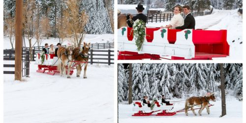 RockingKRanchGallery SleighHorseDrawnCarriageRideSnowWeddingVenue